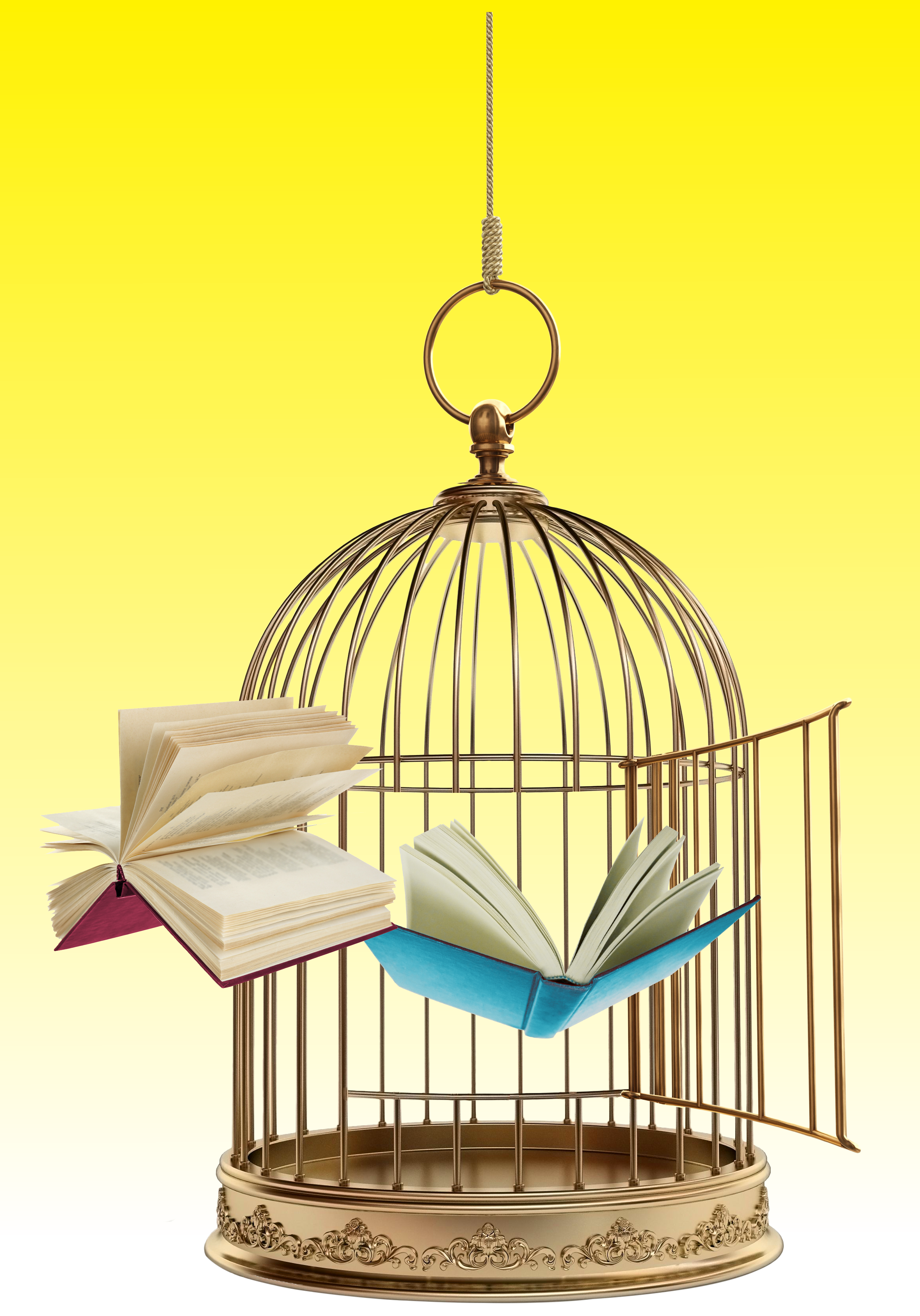 An open birdcage with books flying out of it in front of a soft yellow background.